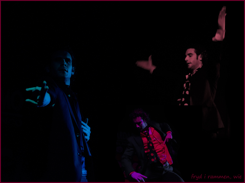 Madrid Flamenco Photo by Wenche Eek